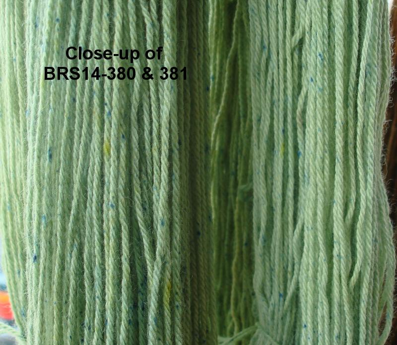 BRS14-380-381-closeup